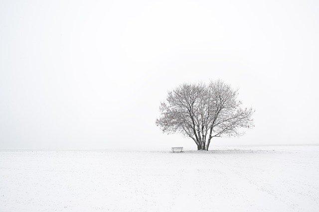 minimalizm zasady
